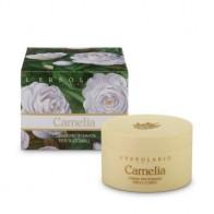 Camellia - Perfumed Body Cream