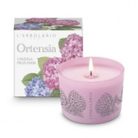 Hydrangea - Perfumed Candle