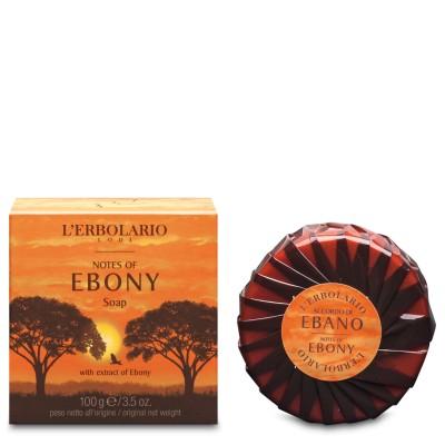 Notes of Ebony Soap