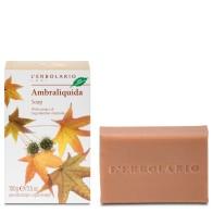 Ambraliquida - Soap